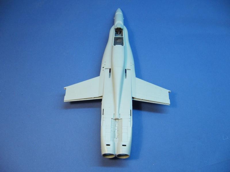 Un frelon dans la tempête F/A-18 A Hornet HB 1/48 P1030242
