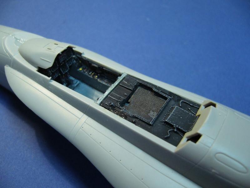 Un frelon dans la tempête F/A-18 A Hornet HB 1/48 P1030243