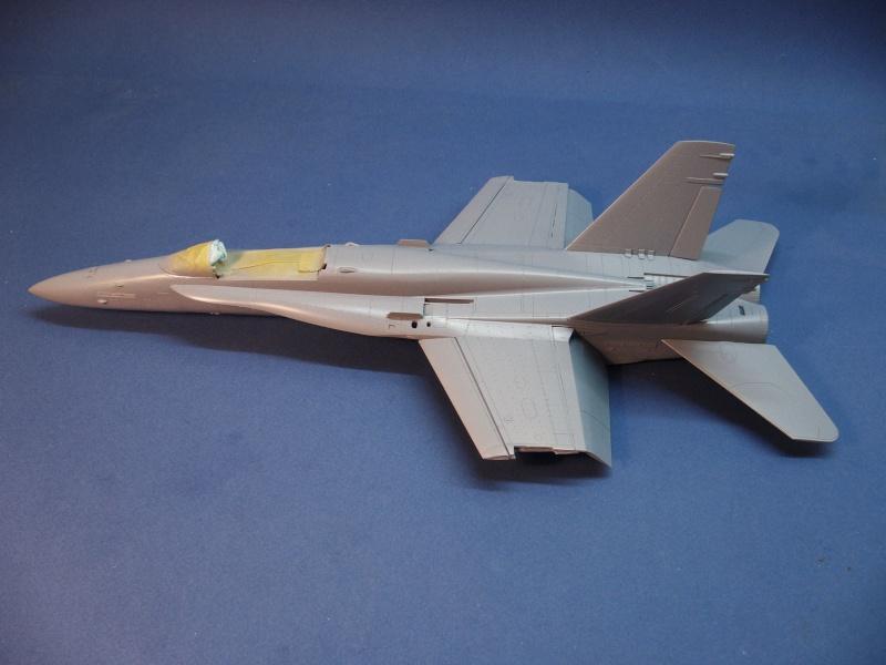 Un frelon dans la tempête F/A-18 A Hornet HB 1/48 P1030266