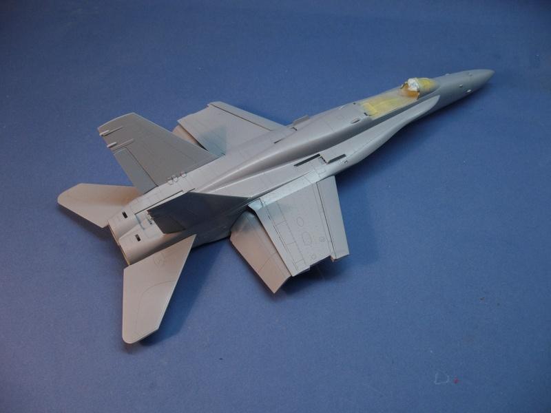 Un frelon dans la tempête F/A-18 A Hornet HB 1/48 P1030267