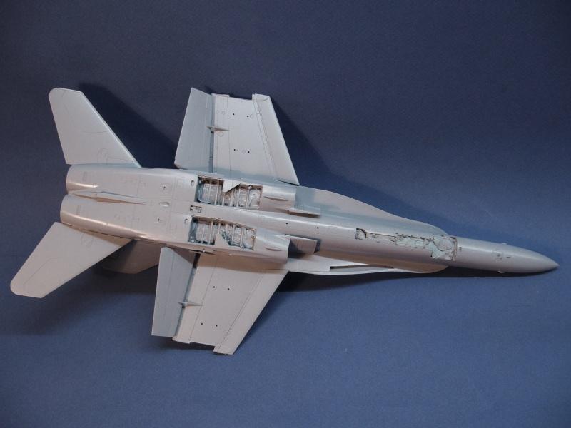 Un frelon dans la tempête F/A-18 A Hornet HB 1/48 P1030268