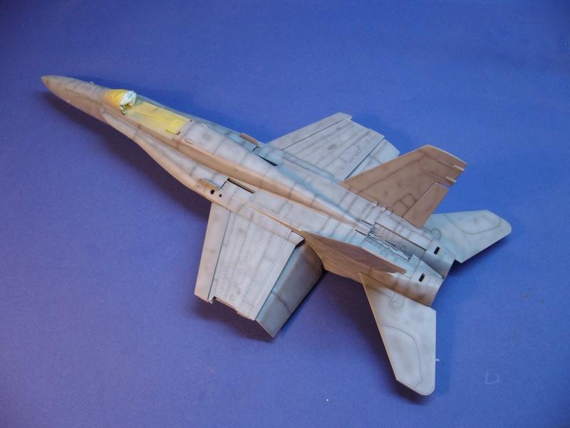 Un frelon dans la tempête F/A-18 A Hornet HB 1/48 P1030269