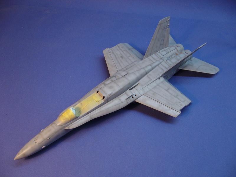 Un frelon dans la tempête F/A-18 A Hornet HB 1/48 P1030270