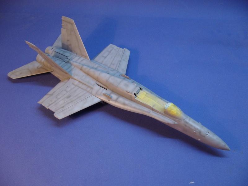 Un frelon dans la tempête F/A-18 A Hornet HB 1/48 P1030271