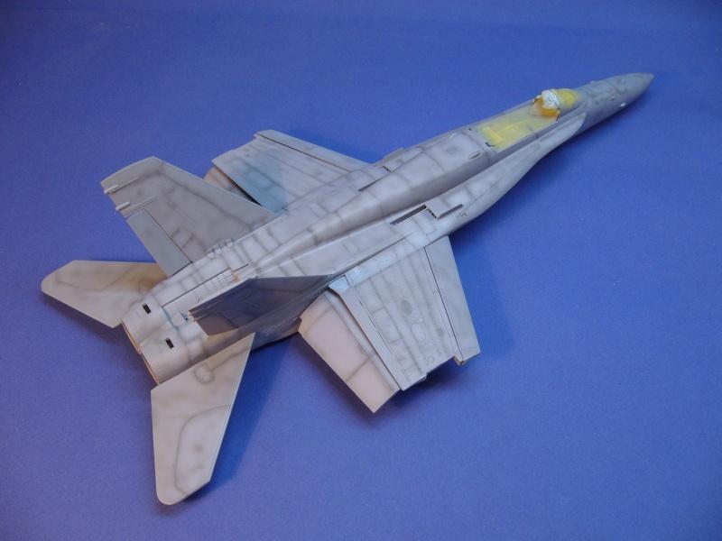 Un frelon dans la tempête F/A-18 A Hornet HB 1/48 P1030272