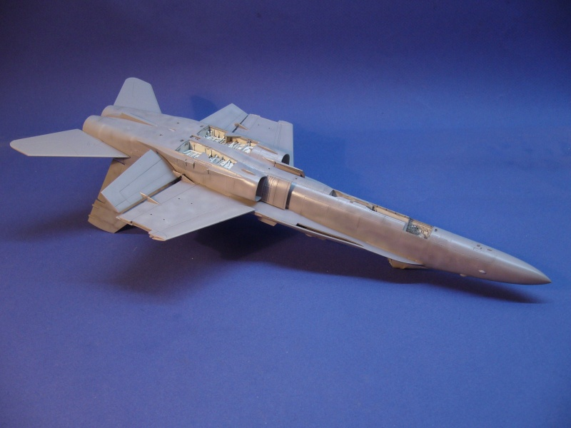 Un frelon dans la tempête F/A-18 A Hornet HB 1/48 P1030273