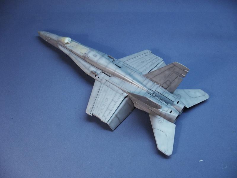 Un frelon dans la tempête F/A-18 A Hornet HB 1/48 P1030278