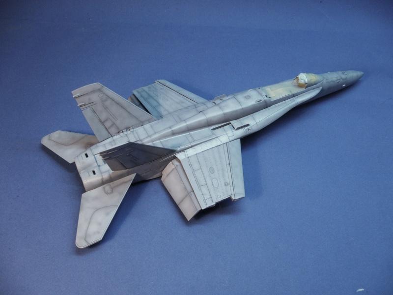 Un frelon dans la tempête F/A-18 A Hornet HB 1/48 P1030279
