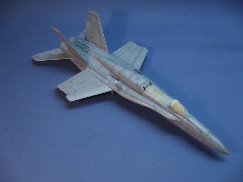 Un frelon dans la tempête F/A-18 A Hornet HB 1/48 P1030280