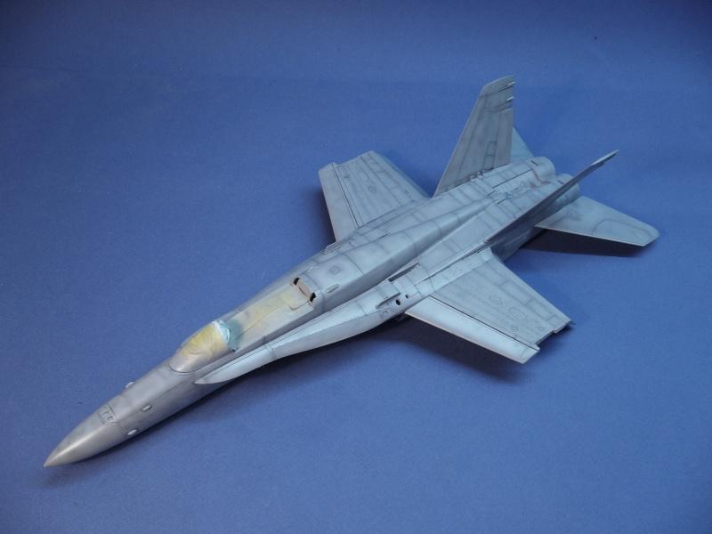 Un frelon dans la tempête F/A-18 A Hornet HB 1/48 P1030281