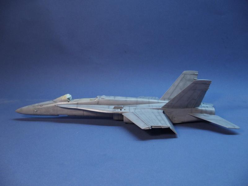 Un frelon dans la tempête F/A-18 A Hornet HB 1/48 P1030282