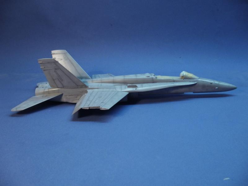 Un frelon dans la tempête F/A-18 A Hornet HB 1/48 P1030283