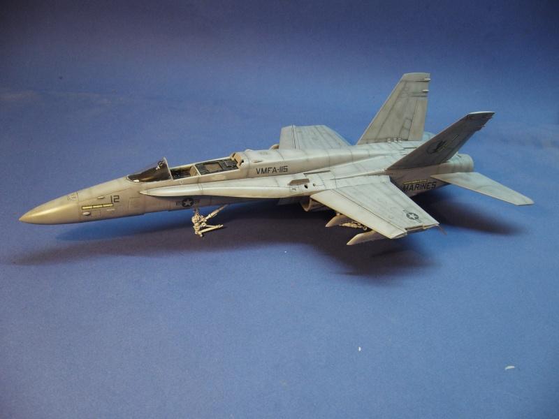Un frelon dans la tempête F/A-18 A Hornet HB 1/48 P1030291