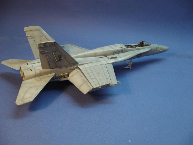 Un frelon dans la tempête F/A-18 A Hornet HB 1/48 P1030310