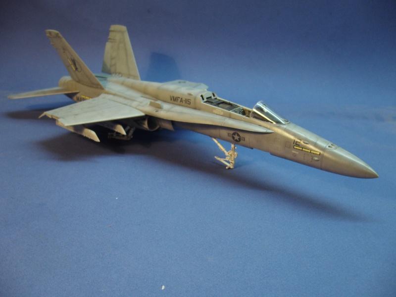 Un frelon dans la tempête F/A-18 A Hornet HB 1/48 P1030311