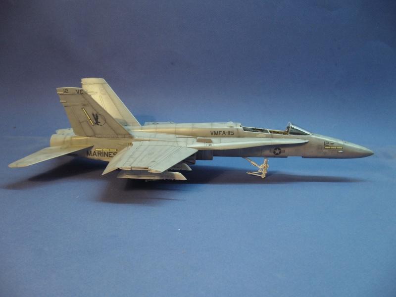 Un frelon dans la tempête F/A-18 A Hornet HB 1/48 P1030312