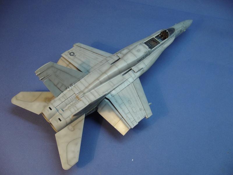 Un frelon dans la tempête F/A-18 A Hornet HB 1/48 P1030313