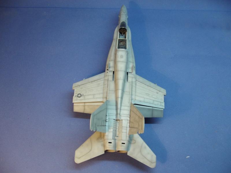 Un frelon dans la tempête F/A-18 A Hornet HB 1/48 P1030314