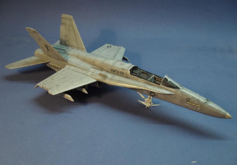 Un frelon dans la tempête F/A-18 A Hornet HB 1/48 P1030315