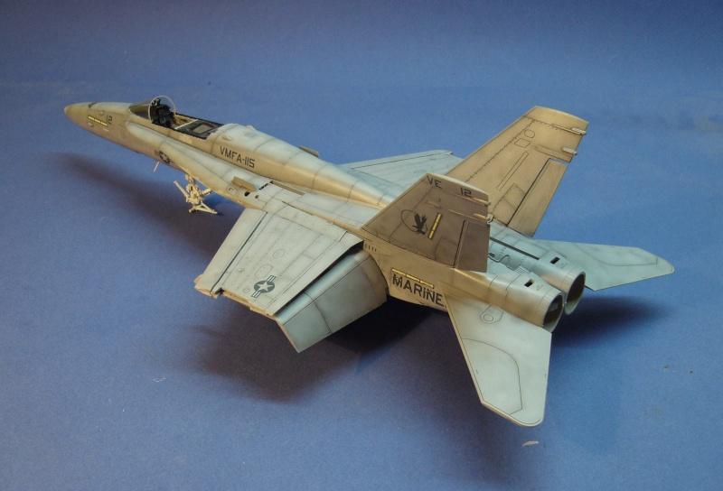 Un frelon dans la tempête F/A-18 A Hornet HB 1/48 P1030316