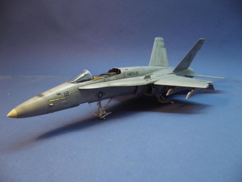 Un frelon dans la tempête F/A-18 A Hornet HB 1/48 P1030317