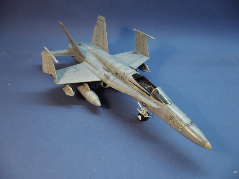 Un frelon dans la tempête F/A-18 A Hornet HB 1/48 P1030323