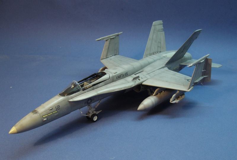 Un frelon dans la tempête F/A-18 A Hornet HB 1/48 P1030324