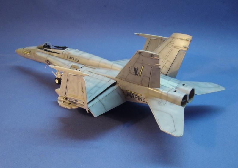 Un frelon dans la tempête F/A-18 A Hornet HB 1/48 P1030325