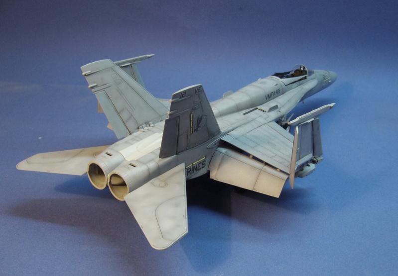 Un frelon dans la tempête F/A-18 A Hornet HB 1/48 P1030326