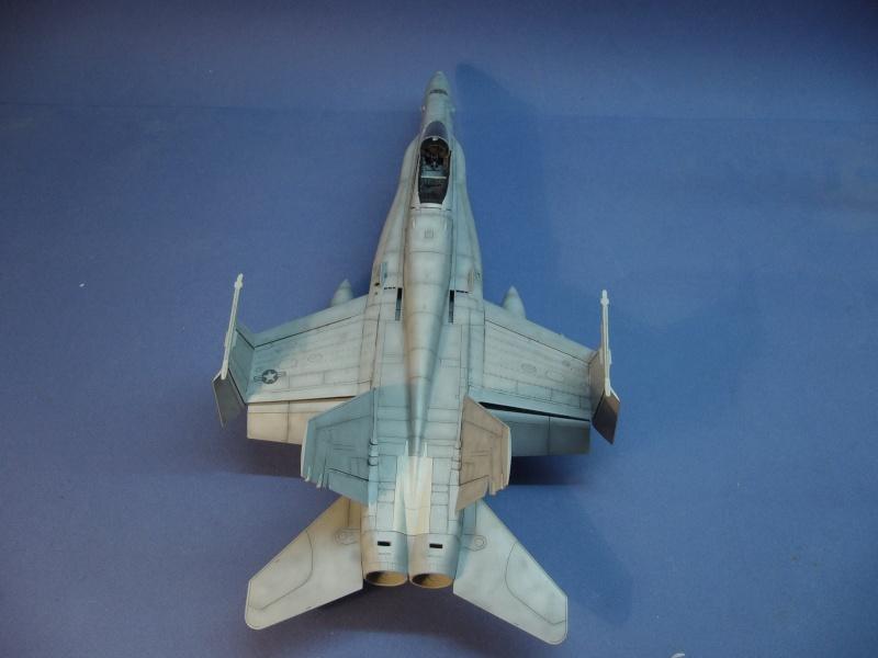 Un frelon dans la tempête F/A-18 A Hornet HB 1/48 P1030327