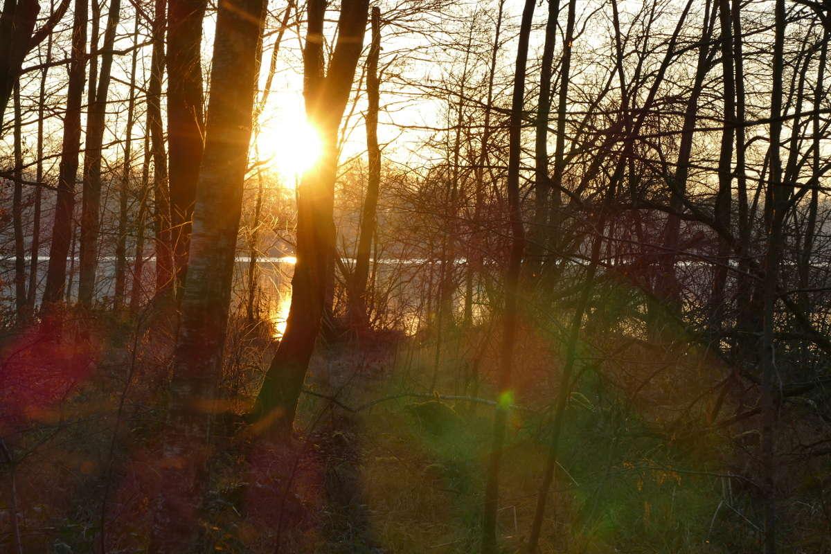 paysage d'hiver Couche11