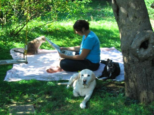 Mes aventures au jardin (9 août 2010) Img_1511