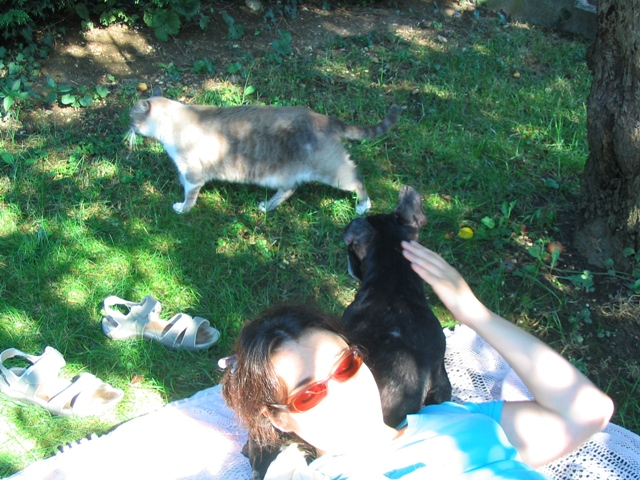 Mes aventures au jardin (9 août 2010) Img_1513