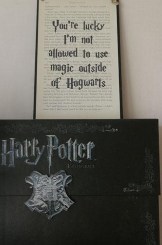 SWAP – Harry Potter / Longue durée - Page 15 _igp8919