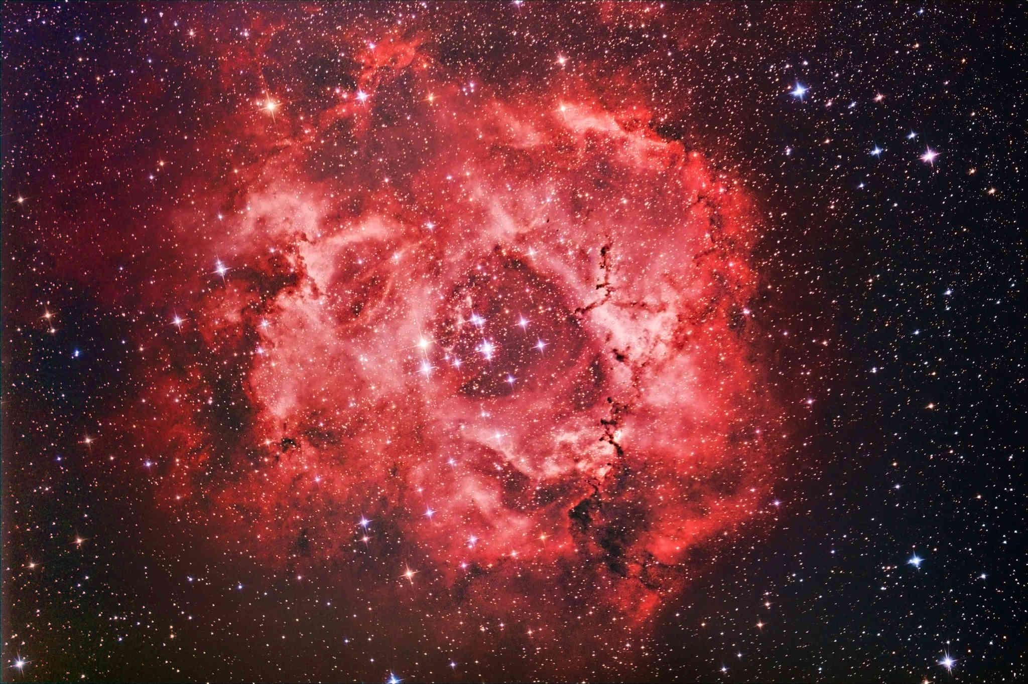21 Janvier 2017 - California  & Rosette Nebula Rosett10