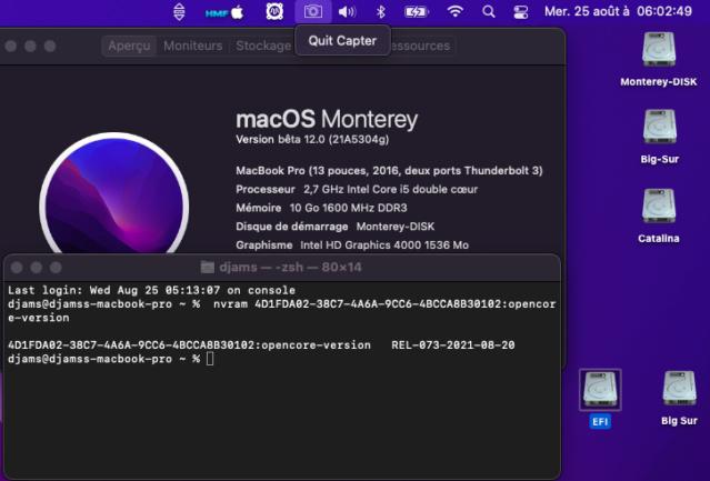 Tuto triple boot macOS avec opencore 073 916