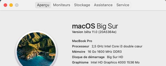 macOS Big Sur 11 / 11.1 / 11.2 / 11.3 (Beta) - Page 6 Captu248