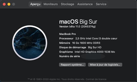 macOS Big Sur 11 Beta - Page 7 Captu322