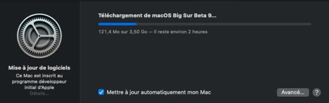 macOS Big Sur 11 Beta - Page 9 Captu347