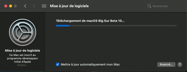 macOS Big Sur 11 Beta - Page 9 Captu361