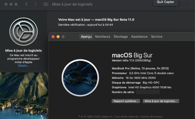 macOS Big Sur 11 Beta - Page 9 Captu364