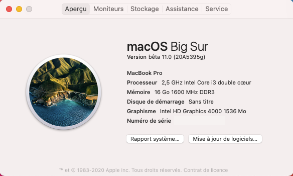 macOS Big Sur 11 Beta - Page 10 Captu394