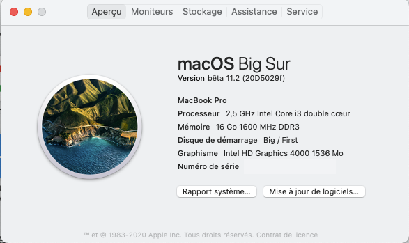 macOS Big Sur 11 / 11.1 / 11.2  (Beta) - Page 13 Captu533