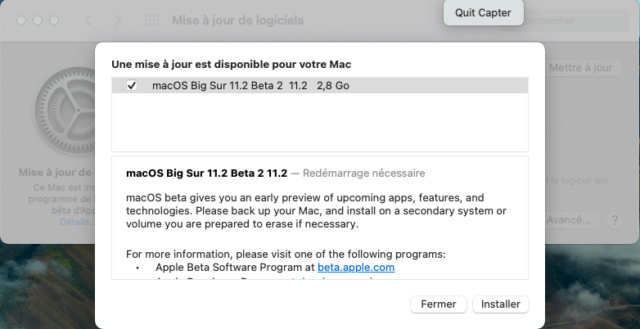 macOS Big Sur 11 / 11.1 / 11.2 / 11.3 (Beta) - Page 13 Captu551