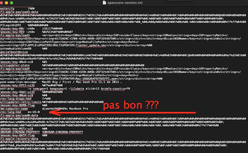 Connaitre sa version OpenCore  Captu569