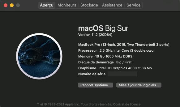 Mise a jour macOS Big Sur 11.2 (20D64) Captu680