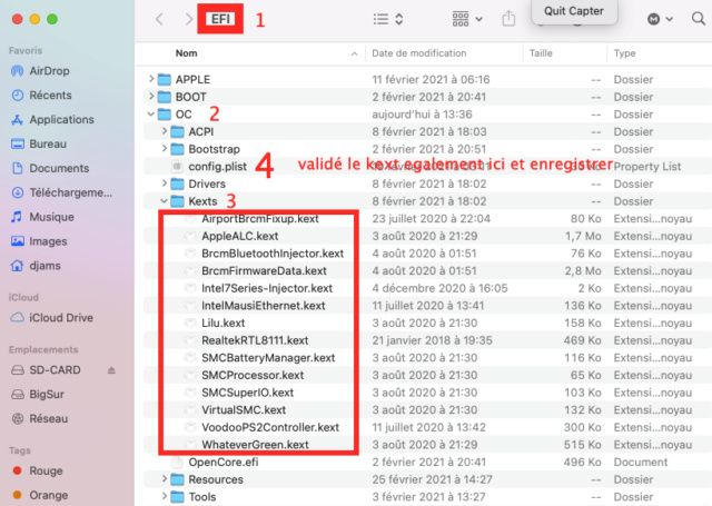 Probleme de connexion carte ethernet Intel i225-V sous MacOs CATALINA Captu789