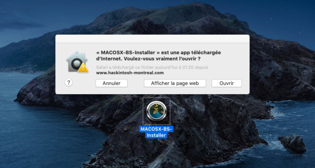 [résolu] Problème upgrade Catalina vers BS avec MACOSX-BS-Installer / OC Image_11