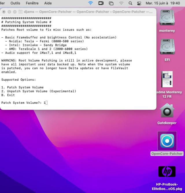 ( RESOLU) OpenCore-Patcher / erreur . Sans_134
