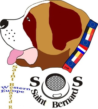 SOS CROQUETTES D ESPOIR